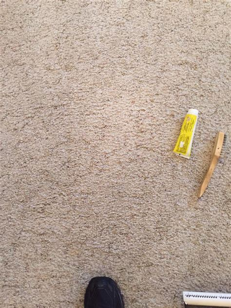 rug stain removal carpet stain removal bismarck nd on the spot carpet upholserty cleaning