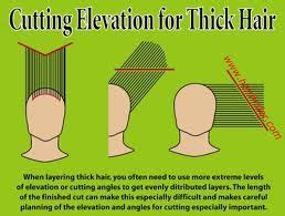 how to cut hair in layers yourself 1000 images about diagram haircut on pinterest