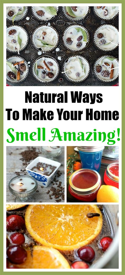 7 Ways To Make Your Home Smell by 8 Ways To Make Your Home Smell Amazing