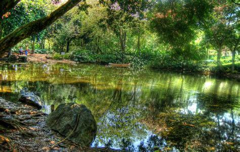 jardin medellin file jardin botanico medellin jpg wikimedia commons