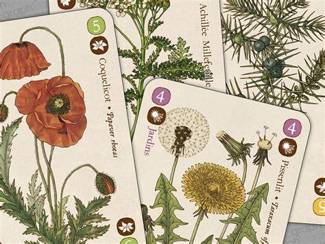 comptoir herboristerie planches botaniques pour le comptoir d herboristerie
