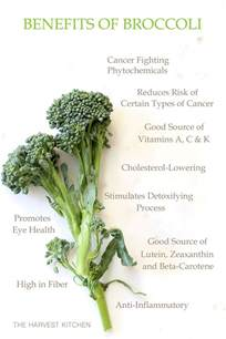 ina garten broccoli 100 ina garten broccoli the best ina garten recipes