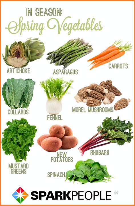 How Well Do You Springs Vegetables by What To Eat This Nutrition Diet Veggies And
