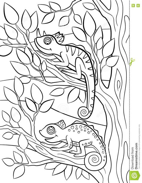 cute wild animals coloring pages coloring pages of wild animals cartoon wild animal