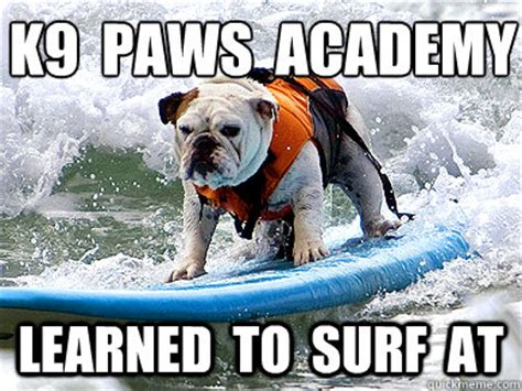 Surf Shirt Meme - 40 very funny ninja pictures and photos