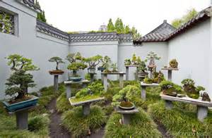 Chinesischer Garten Pflanzen by Garden Plants Www Imgkid The Image Kid Has It