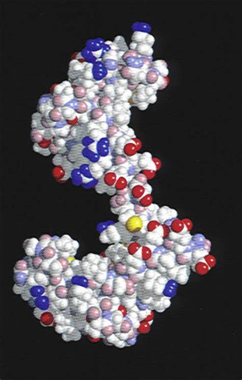 oxygen the molecule that made the world oxford landmark science ebook major material complexity level 4 biological system