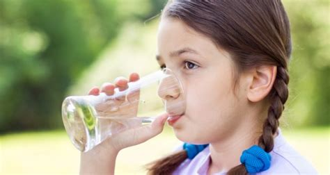 how much water should my drink how much water per day should my child drink association of childcare physicians