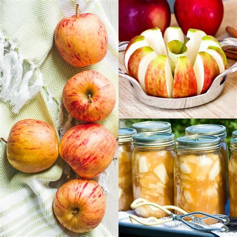 apple pie filling for canning or freezing our best bites best 25 canning apple pie filling ideas on