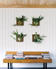 plants in home decor incredible home decorating with plants intended for your
