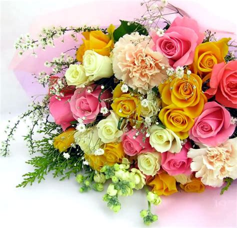 flowers scraps pictures images graphics for myspace flower scraps flower images pictures of beautiful