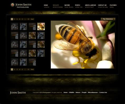 free photography templates photography website templates