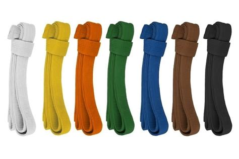 karate belt order of colors what are the karate belt colors in order how were they