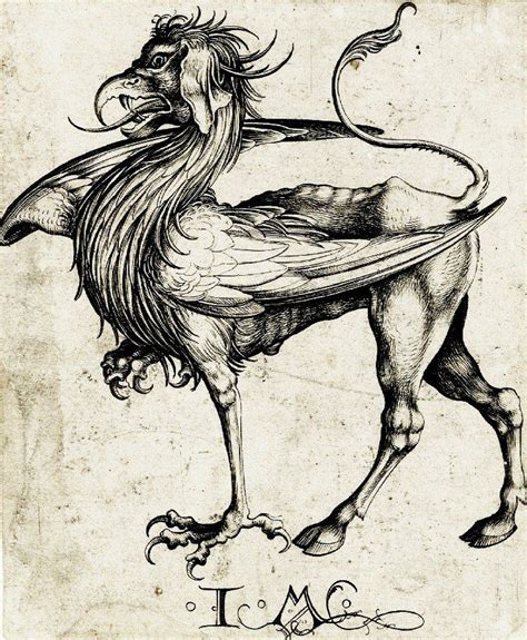 tattoo nightmares griffin 136 best images about griffin on pinterest marauders fan
