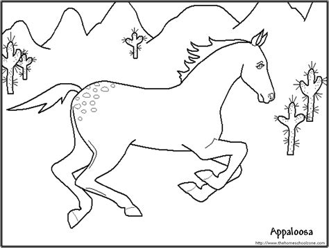coloring pages of appaloosa horses coloring pages for az coloring pages