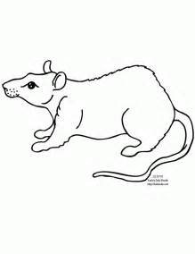 what color are rats free printable rat coloring page