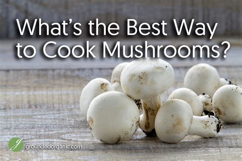 what s the best way to make careful decisions hbs what s the best way to cook mushrooms grounded organic