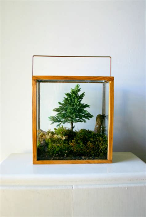 sti per vasi terrari vasi mini serre piante appartamento 02 keblog