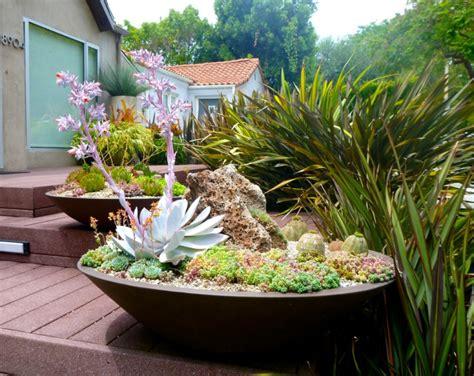 Trendy Garden Ideas 20 Succulent Container Garden Designs Ideas Design Trends Premium Psd Vector Downloads