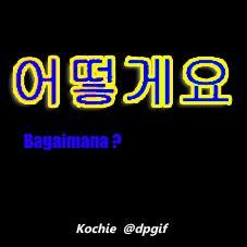 dp bbm bahasa korea bergerak gif animasi kochie frog