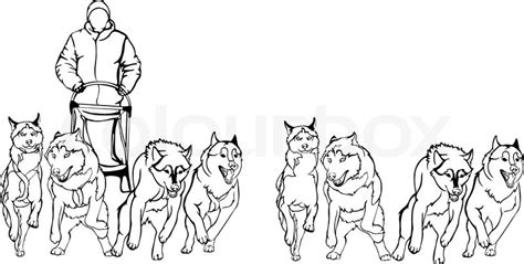 dog team coloring page pics for gt cartoon musher sled