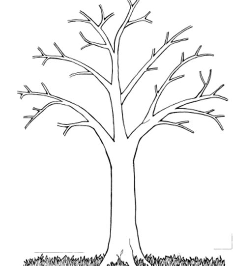 tree pattern without leaves coloring page tree printable tree without leaves coloring pages