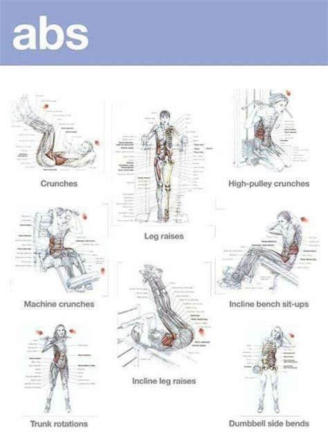 8 Really Dietsworkouts That Really Work by 2022 Best Images About Mens Fitness On