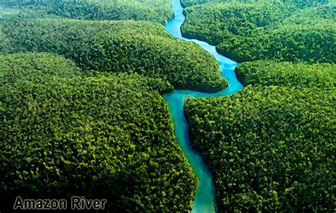 amazon de bogsavs