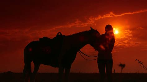 horseback riding silhouette of with horse standing in