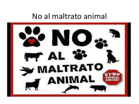 no maltrato animal no al maltrato animal