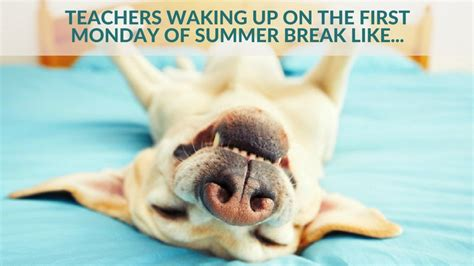 Teacher Summer Meme - end of year memes for teachers who are just hanging on