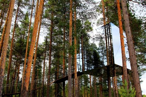 tree hotel sweden harads building e architect most amazing tree houses in the world