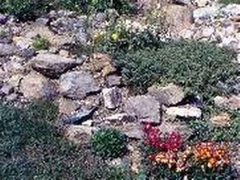 giardini rocciosi in pendenza orti e giardini giardino roccioso