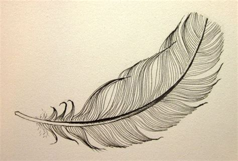 Floating Feather Drawing floating black feather original ink drawing