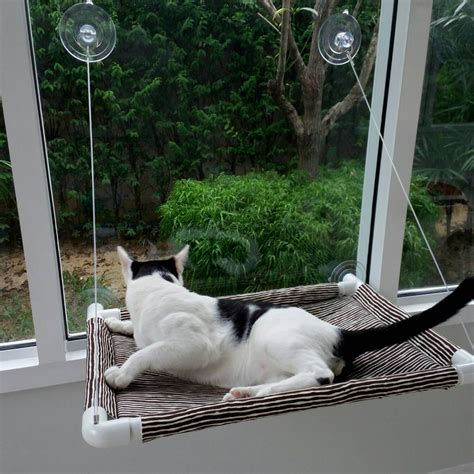 window cat bed window cat bed cat bed cat cot cat hammock cat furniture