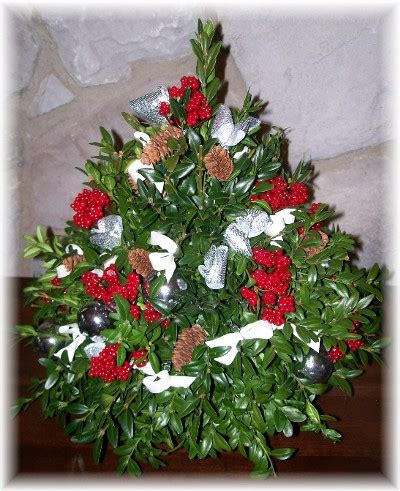 boxwood tabletop christmas tree 19 december 2008 daily