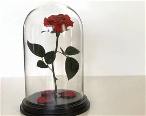 forever rose in glass dome the magical fleur on etsy handmade hunt
