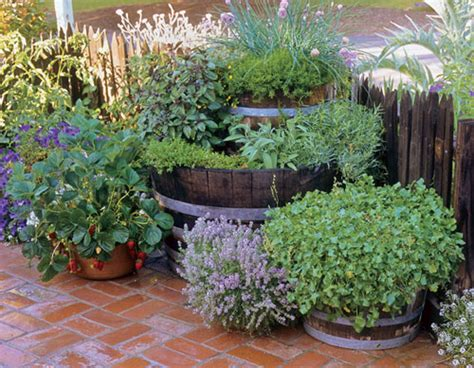 Container Herb Garden Ideas 35 Herb Container Gardens Pots Planters Saturday Inspiration Ideas Bystephanielynn