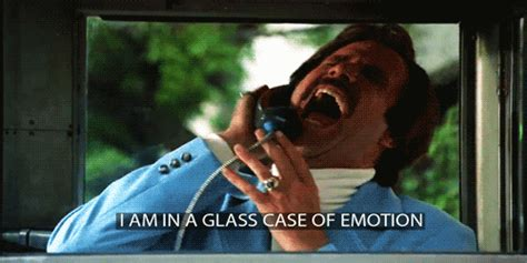 Glass Case Of Emotion Meme - sad will ferrell gif find share on giphy