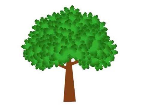 tree animation growing tree animation