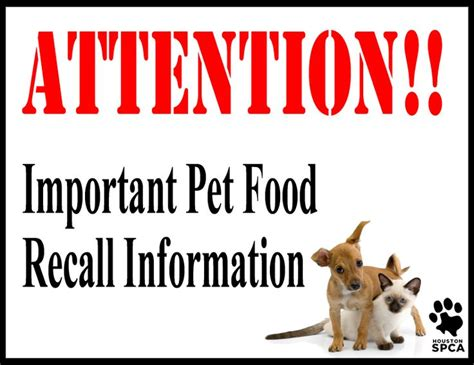 Pet Food Recall by 107 Best Images About Buyer Beware On Toys R