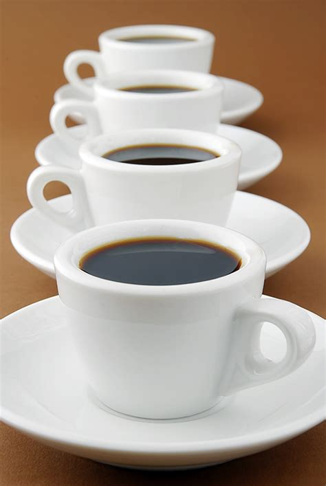 coffee cups row of espresso coffee cups free stock photos