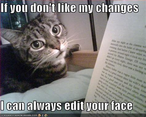 Edit Meme Comic - very cute but funny cats p cats photo 29555583 fanpop