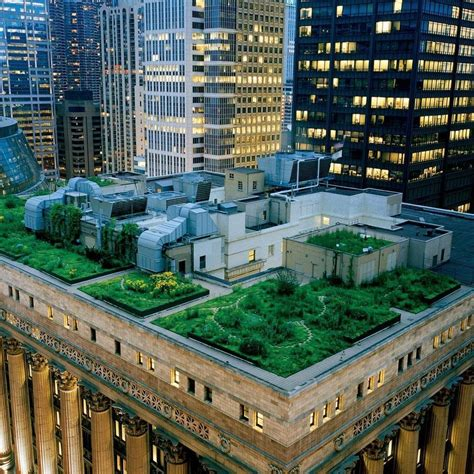 green roofs a useful solution to embellish our home and green roofs schaumburg s sustainable future