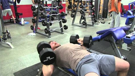 build chest without bench press advanced chest building bench press routine funnycat tv
