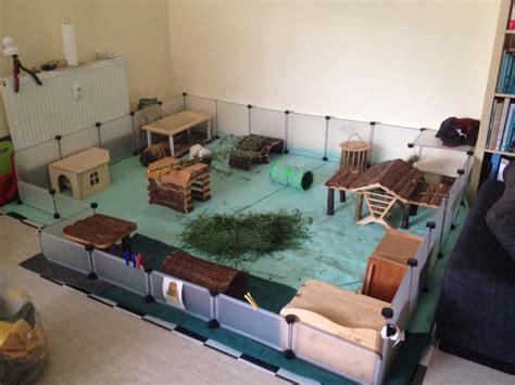 meerschweinchen auslauf wohnung fleece haltung meerschweinchenwiese