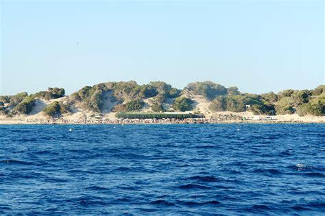 catamaran ibiza tour un tour de catamaran d ibiza 224 formentera islandtouch