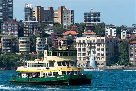paddle boats darling harbour 43 best sydney ferries images on pinterest south wales
