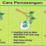pembungkus buah heigrow medium  lembar bibitbungacom