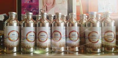 Jual Bibit Jeruk Nipis Sidoarjo desain toko parfum budget murah hasil mewah distributor